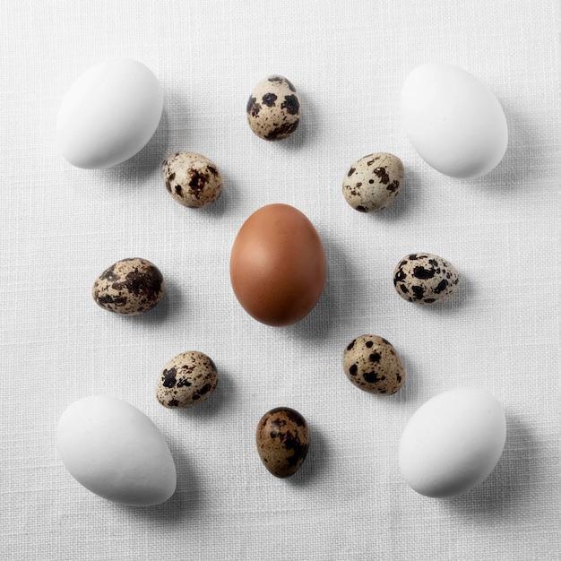 Вид сверху куриные и перепелиные яйца на столе Premium Фотографии