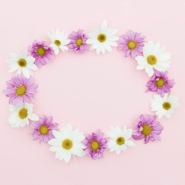 Top view circular frame on pink background Free Photo