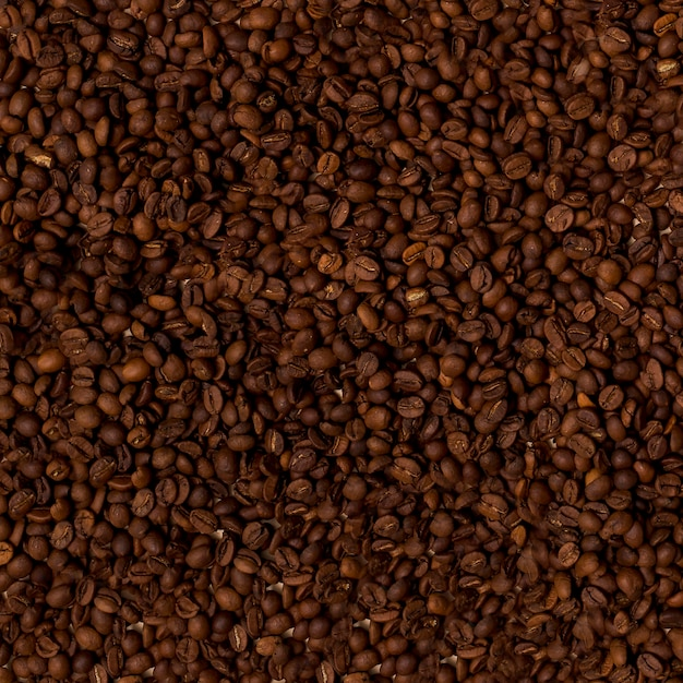 Top view of coffee beans Free Photo