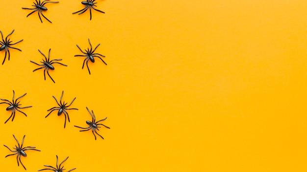 Коллекция пауков с копией пространства Бесплатные Фотографии