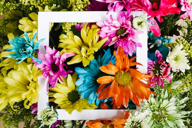 Top view colorful daisies with frame Free Photo