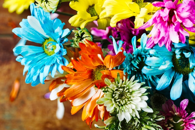 Top view colorful group of daisies Free Photo