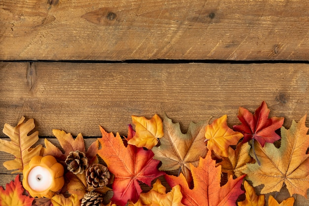 Top view colorful leaves on wooden table Free Photo