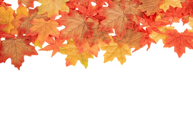 Top view colorful maple autumn leaves on white isolated, autumn concept Premium Photo