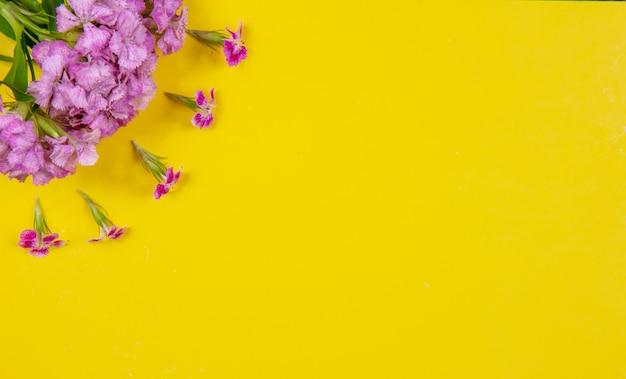 黄色の背景に平面図コピースペースピンクの花 無料写真