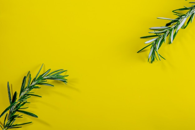 Top view copy space rosemary branches on a yellow background Free Photo