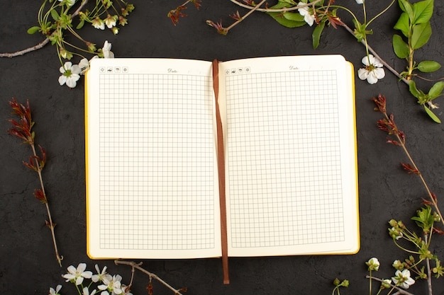 Top view copybook opened on the dark Free Photo