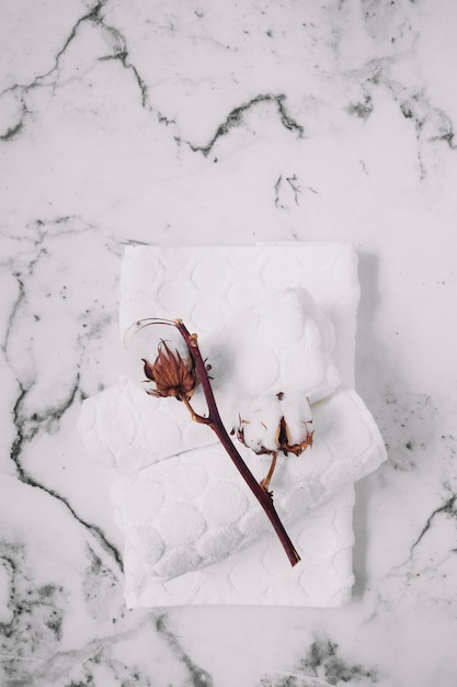 Top view of cotton twig and white napkins on marble backdrop Free Photo