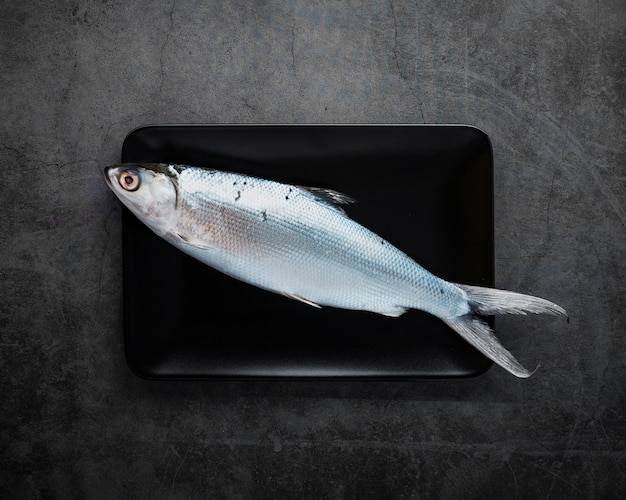 Top view delicious fish with stucco background Free Photo