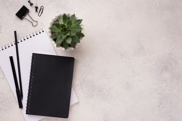 Top view of desk with notebooks and succulent plant Free Photo