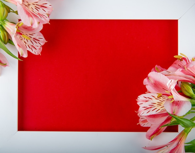 Top view of an empty white picture frame with pink color alstroemeria flowers and a postcard on red background with copy space Free Photo
