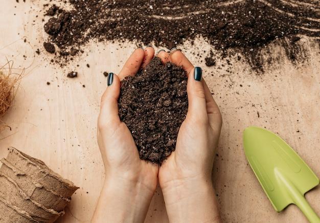 Vista dall'alto delle mani femminili che tengono il suolo Foto Gratuite