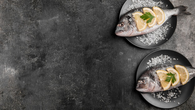 上面図の魚のコピースペース 無料写真