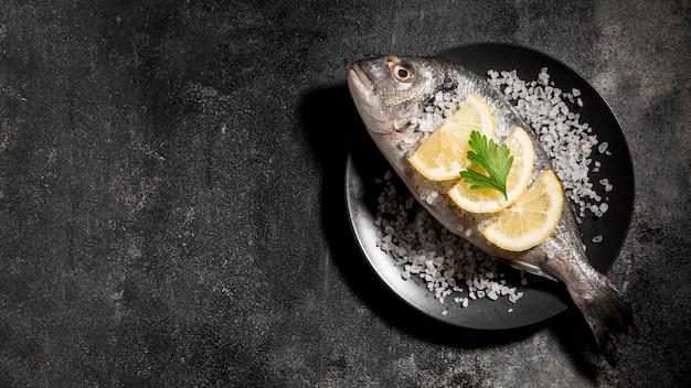 접시 복사 공간에 상위 뷰 물고기 무료 사진