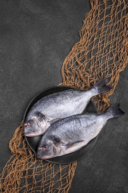 Vista dall'alto pesce nel piatto e rete da pesca Foto Gratuite