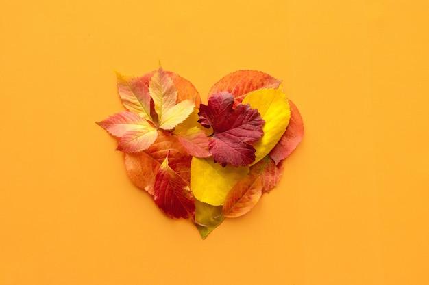 Вид сверху, плоский макет осеннего осени с декоративной композицией формы сердца Premium Фотографии