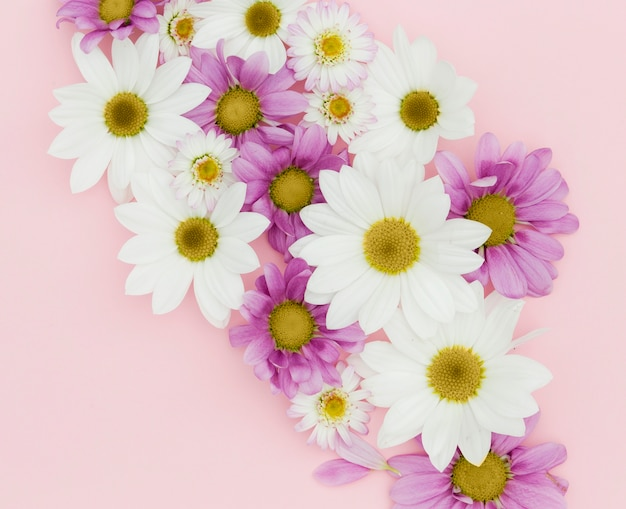 Top view floral arrangement on pink background Free Photo
