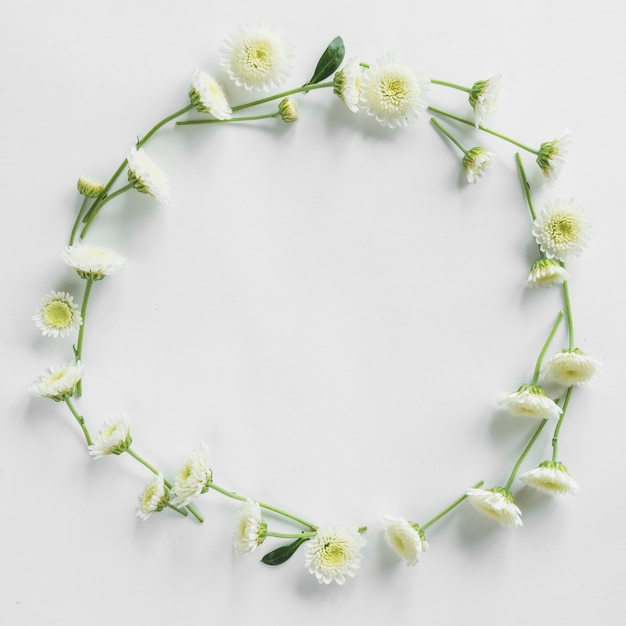 Top view of floral frame Free Photo