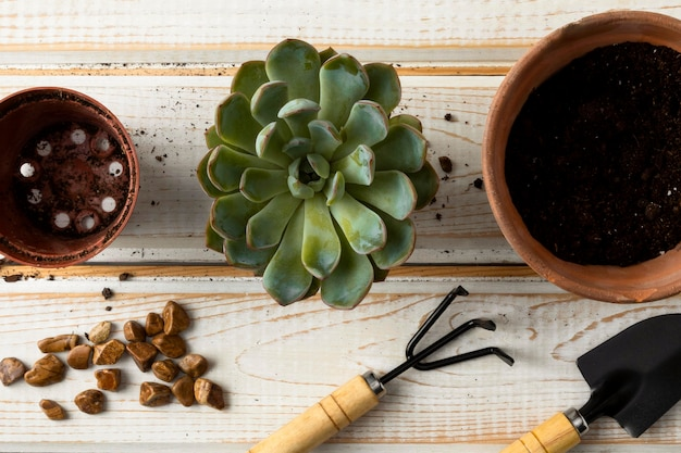 Top view flower pots and tools Free Photo