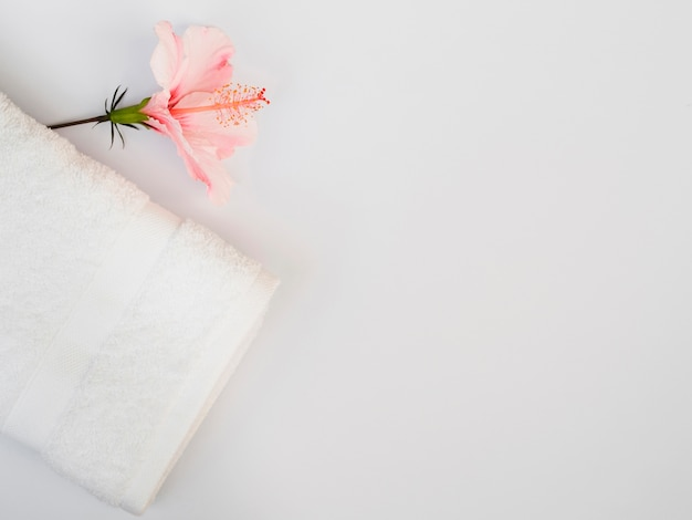 Top view flower and towel with copy space Free Photo