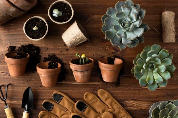 Top view flowers pots Premium Photo