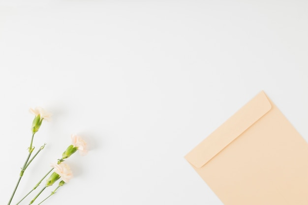 Top view flowers with envelope Free Photo