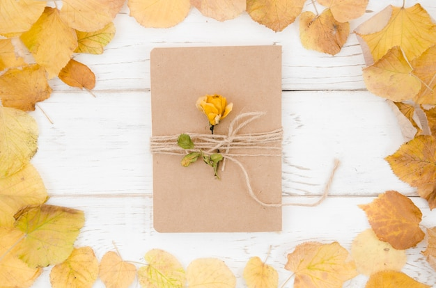Top view folder with autumn leaves frame Free Photo