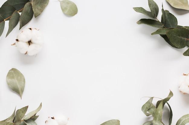 잎 가지의 상위 뷰 프레임 무료 사진