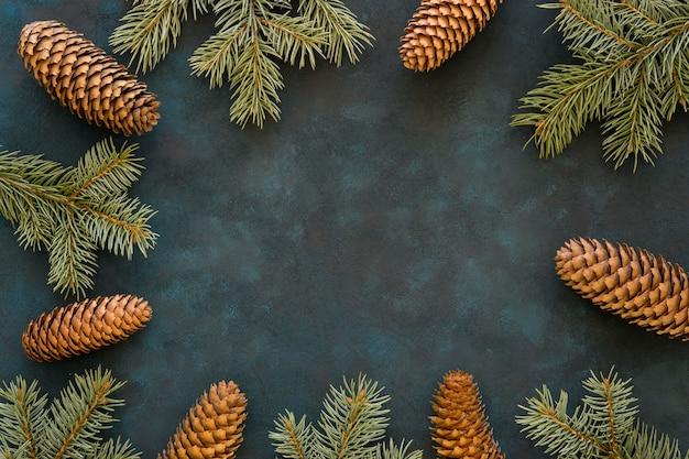 Cornice vista dall'alto di pigne e aghi Foto Gratuite