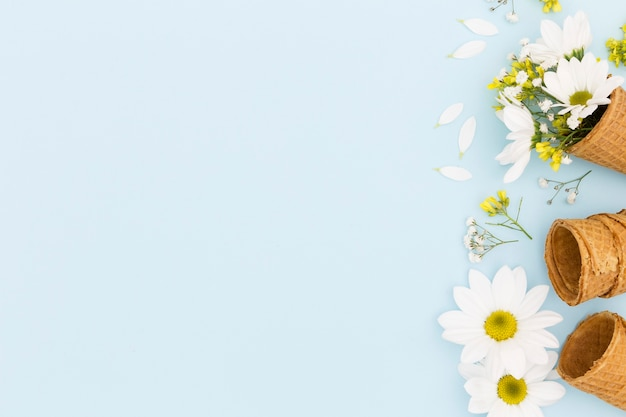 Top view frame with cones and daisies Free Photo