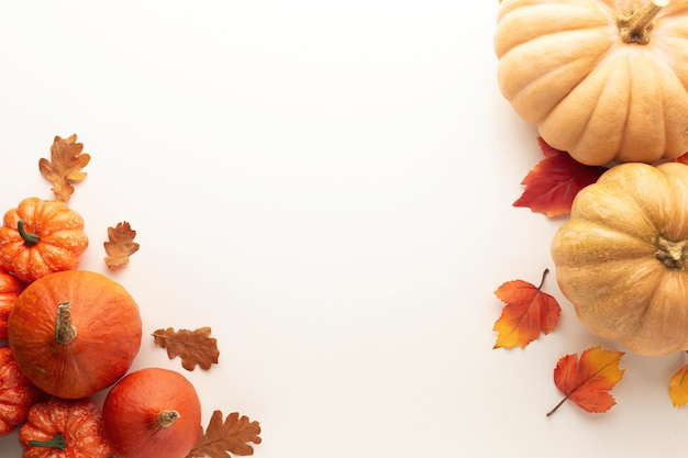 Top view frame with pumpkins on white background Free Photo