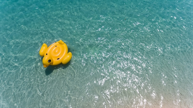 Top view from sky of duck swiming lifebuoy. Premium Photo
