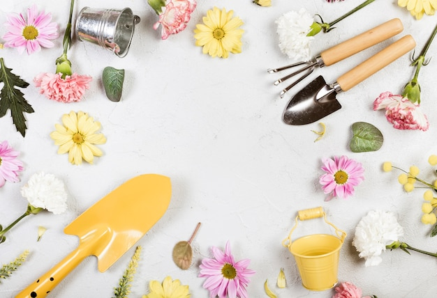 Top view gardening tools and flowers Free Photo
