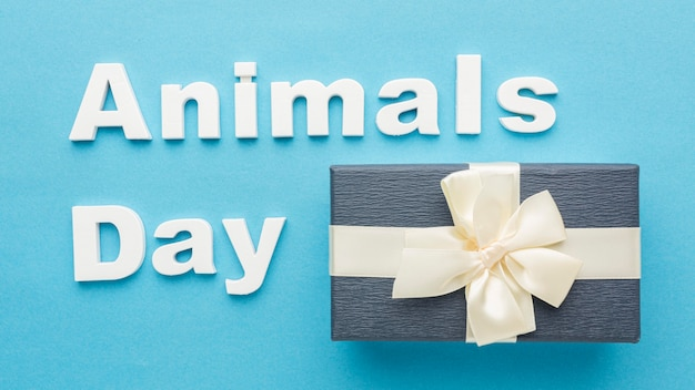 Top view of gift with bow for animal day Free Photo