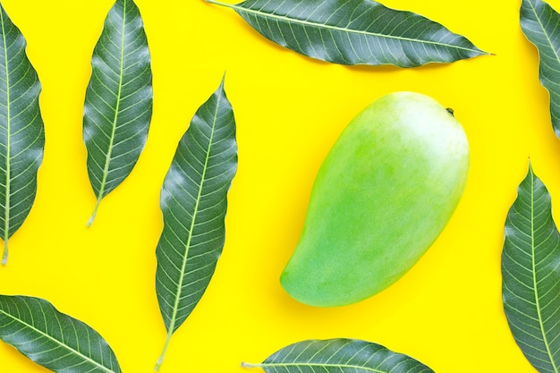 Top view of green mango with leaves on yellow table. top view Premium Photo