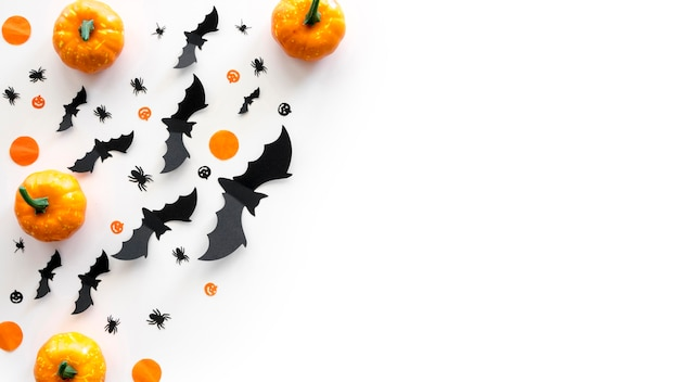Top view halloween concept with pumpkins and bats Free Photo