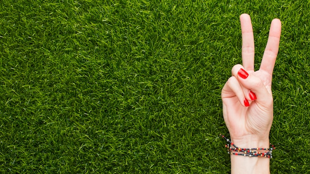 Top view of hand making peace sign on grass with copy space Free Photo