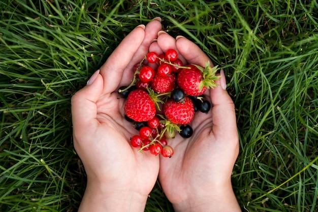 Вид сверху руки, держа фрукты Бесплатные Фотографии