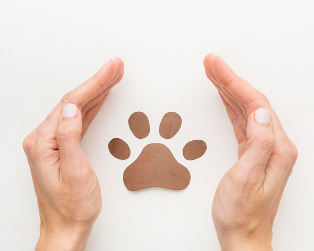 Top view of hands protecting paw print for animal day Free Photo