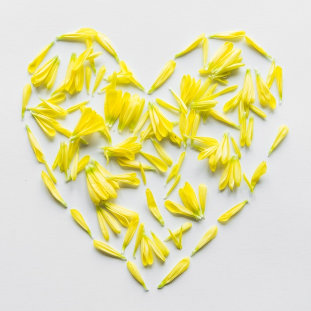 Top view of heart made of yellow petals Free Photo