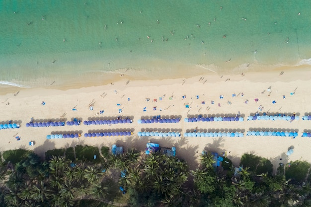 Top view landscape of beautiful tropical sea in summer Premium Photo