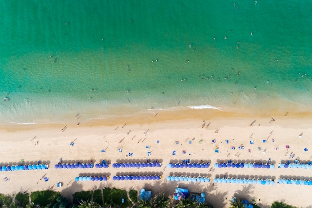 Top view landscape of beautiful tropical sea in summer Premium Photo