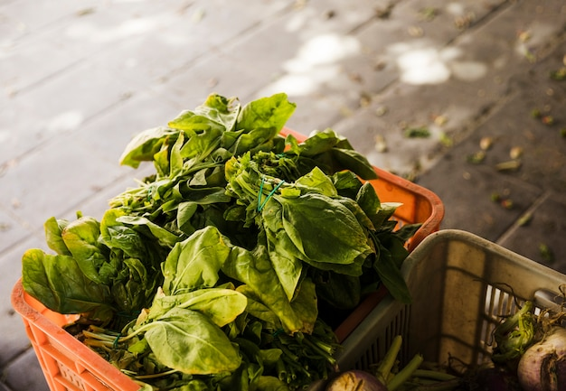 Top view of leafy vegetable in crate at supermarket Free Photo