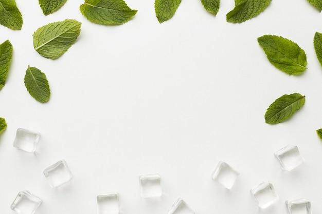 Cornice di foglie e cubetti di ghiaccio vista dall'alto Foto Gratuite