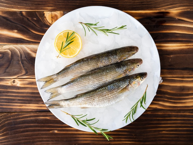 Top view mackerels on a plate with ice Free Photo