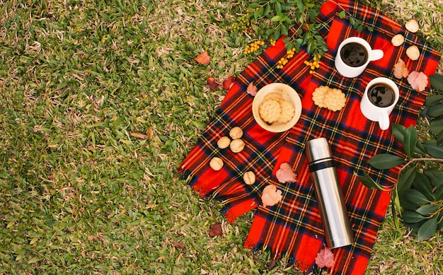 Top view minimalist picnic with copy space Free Photo