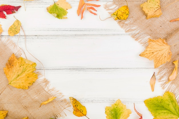 Top view minimalistic autumn leaves frame Free Photo