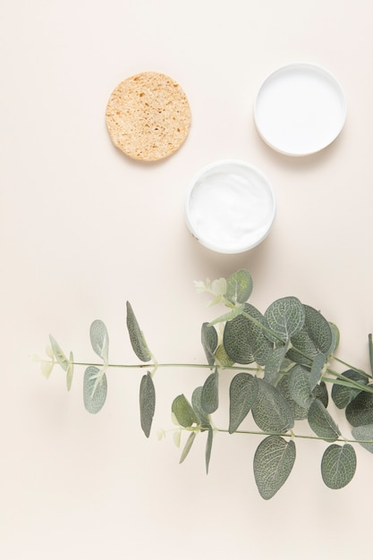 Top view of natural body butter and leaves on plain background Free Photo