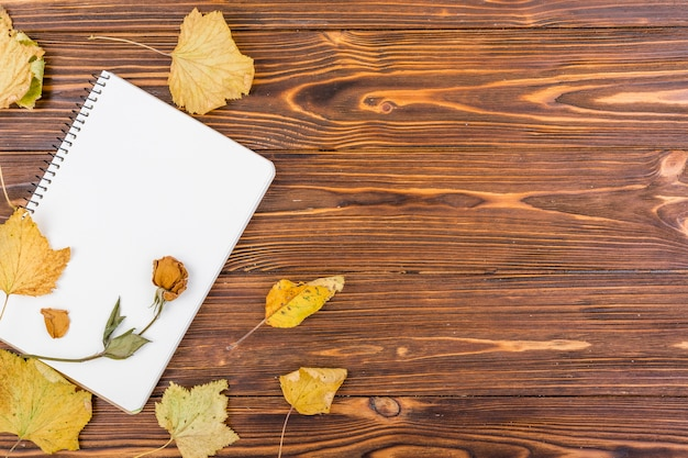 Top view notebook with flower and autumn leaves Free Photo