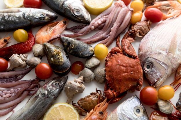 Вид сверху на ассортимент морепродуктов с помидорами Бесплатные Фотографии